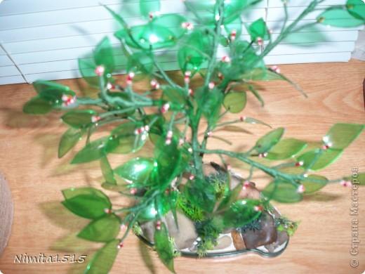 Дерево из пластиковой бутылки и бисера фото 10