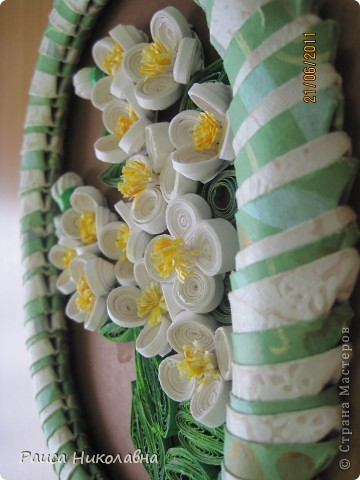 Вот и у нас цветёт жасмин. фото 4