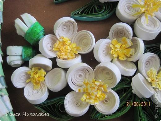 Вот и у нас цветёт жасмин. фото 3