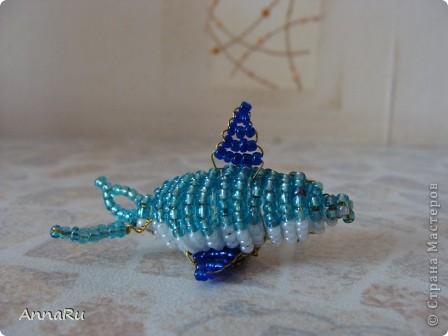 Дельфин фото 2