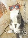 Вот какое чудо мама и я приготовили на день рождение нашего котика,которого зовут Кекс!!!:-)(изивините за маленькие фотграфии,тк интернет очень слабый и большая и средняя фотографии грузятся полчаса:(фотографии мои.не картинки!) фото 4