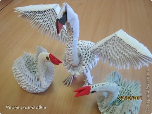 Лебедь с белыми ногами. Коллективная работа. фото 3