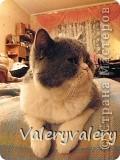 Вот какое чудо мама и я приготовили на день рождение нашего котика,которого зовут Кекс!!!:-)(изивините за маленькие фотграфии,тк интернет очень слабый и большая и средняя фотографии грузятся полчаса:(фотографии мои.не картинки!) фото 10