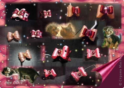 Это неполная коллекция моих собачьих бантиков (остальные уже лень фотографировать, но как-нибудь - обязательно). Выставляю оформленные скомпанованные фотки так, как они выглядят в моем домашнем альбоме, чтобы не перегружать сайт большим количеством фотографий. Это красные, малиновые и розовые бантики. №1 фото 6