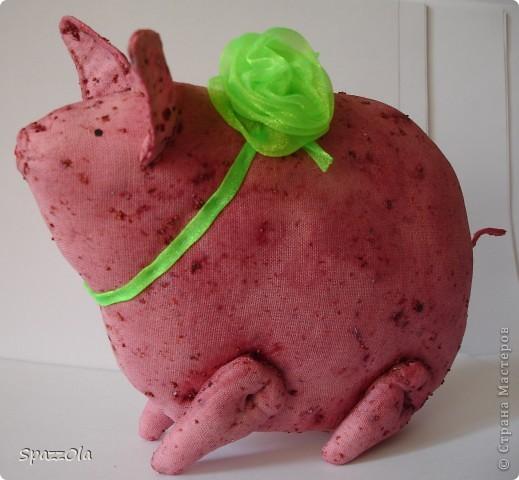 клубничная свинка фото 3