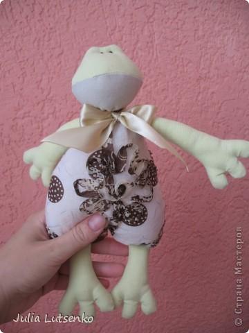 Вот такая вот жабка сшилась племяшке на день рождения в приложение к основному подарку )))) фото 2