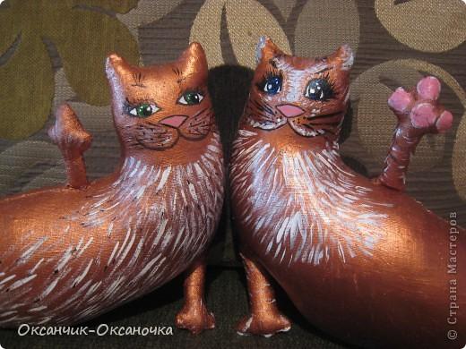 Сытые коты  фото 2