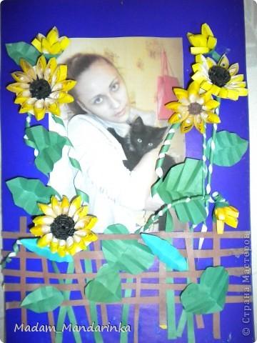 украсила фотографию)))