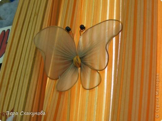 Как сделать капроновую бабочку Роза Экспресс