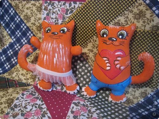 Кошечки фото 6