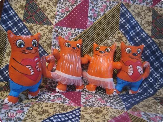 Кошечки фото 8