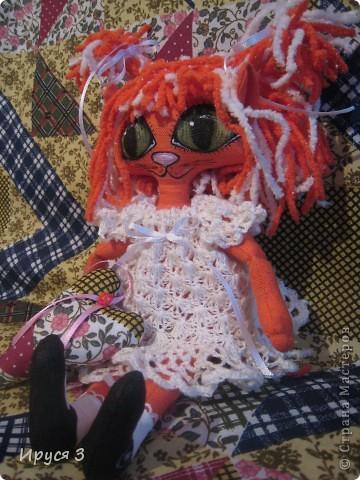 Кошечка Алиса  фото 17