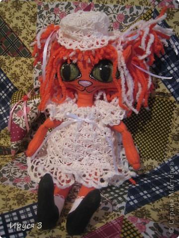 Кошечка Алиса  фото 16