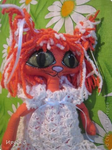 Кошечка Алиса  фото 10