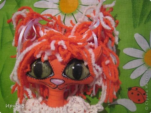Кошечка Алиса  фото 12