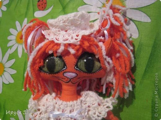 Кошечка Алиса  фото 15