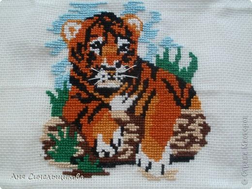 Этого тигрёнка я вышила совсем недавно. Его мне подарила Аня ещё давным-давно, но руки всё никак не доходили. фото 1