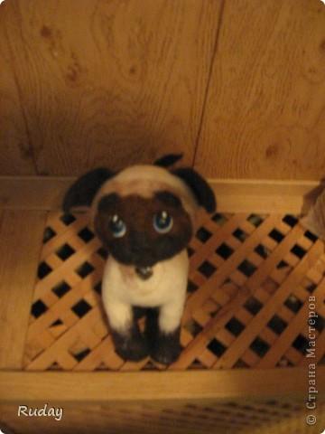 Моя первая работа по валянию. Вот такой котенок))) фото 1