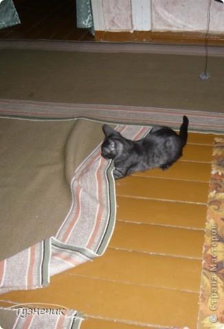 Наш Бублик немного вырос, он очень подвижный, и нормально сфотографировать его можно только, когда он спит...тем более так сладко))) фото 9