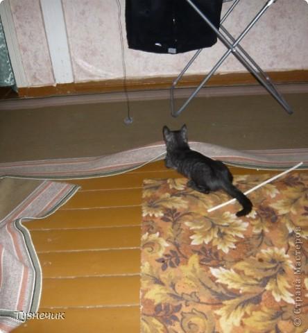 Наш Бублик немного вырос, он очень подвижный, и нормально сфотографировать его можно только, когда он спит...тем более так сладко))) фото 11