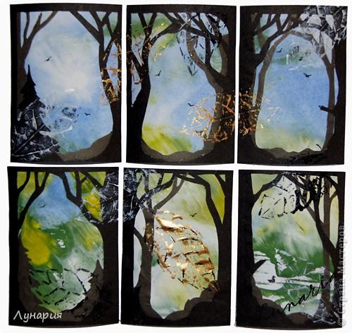 """Представляю серию карточек """"Из жизни деревьев - 2"""" на обмен. Выбирайте карточки и пишите мне в личку свои адреса.  фото 1"""