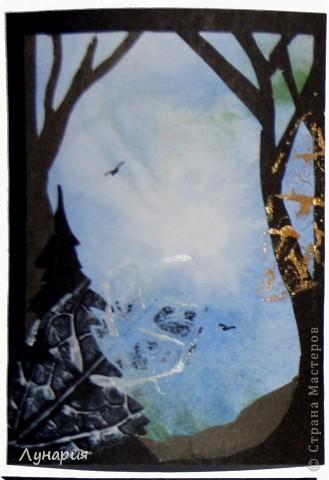 """Представляю серию карточек """"Из жизни деревьев - 2"""" на обмен. Выбирайте карточки и пишите мне в личку свои адреса.  фото 2"""