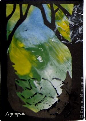 """Представляю серию карточек """"Из жизни деревьев - 2"""" на обмен. Выбирайте карточки и пишите мне в личку свои адреса.  фото 3"""