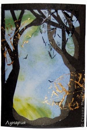 """Представляю серию карточек """"Из жизни деревьев - 2"""" на обмен. Выбирайте карточки и пишите мне в личку свои адреса.  фото 4"""