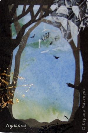 """Представляю серию карточек """"Из жизни деревьев - 2"""" на обмен. Выбирайте карточки и пишите мне в личку свои адреса.  фото 6"""