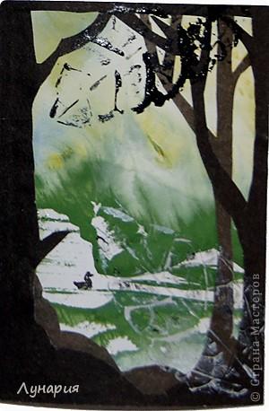 """Представляю серию карточек """"Из жизни деревьев - 2"""" на обмен. Выбирайте карточки и пишите мне в личку свои адреса.  фото 7"""