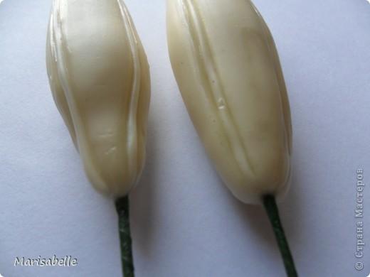 Здравствуйте! Хочу показать Вам свою первую лилию. Это подарок для моей любимой кузины, которая живет в далеких для меня Черновцах. Поэтому мой цветочек впервые уедет так далеко. Лилия оформлена в кокосовую скорлупу, поэтому, думаю, будет хорошим украшением интерьера. фото 26