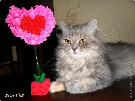 Сделала такое вот сердечко...кошка от него не отходит)