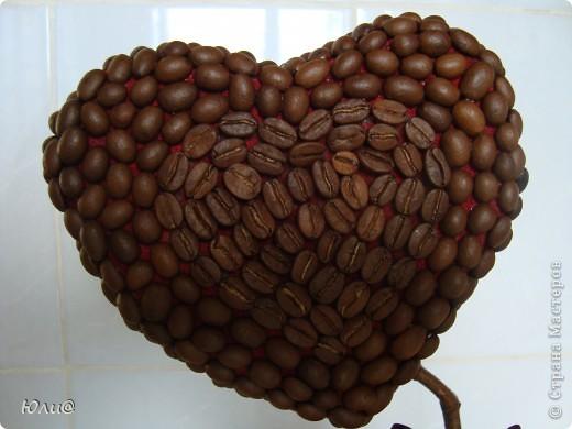 "Кофейное дерево ""Сердечко"" фото 3"