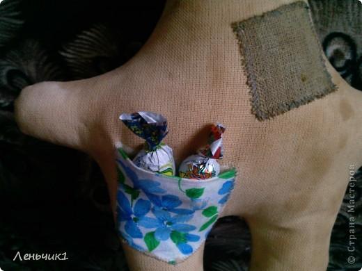 Идея создания этого зайца взята из блога Розетки, за что ей огромное спасибо! Мы с мужем никак не могли договориться по поводу имени: я говорила - Пряник, а муж - Печенюшка. Вот и получился Пряник Печенюшкин фото 4