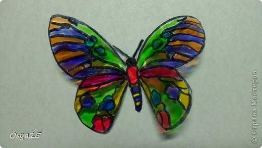 Бабочки из пластиковой бутылки!Разрисованы детскими красками по стеклу!Вдохновилась с этого урока  http://stranamasterov.ru/node/166020?tid=451%2C1248 фото 4