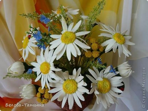 первые ромашки (наконец-то я начала осваивать другие цветы) фото 4