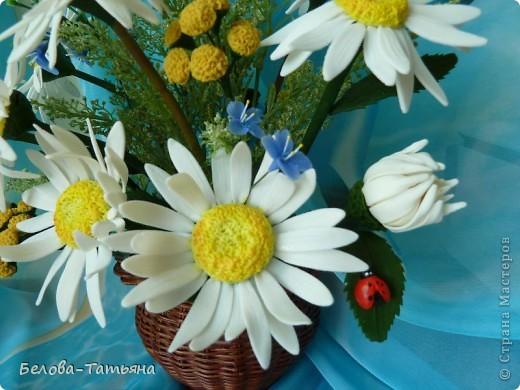 первые ромашки (наконец-то я начала осваивать другие цветы) фото 3
