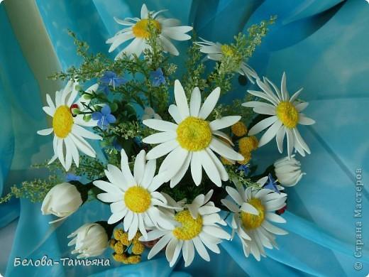 первые ромашки (наконец-то я начала осваивать другие цветы) фото 1