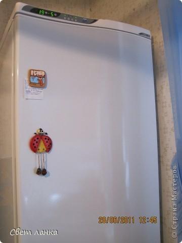 Божья коровка  лети на холодильник..... Первый магнитик. фото 2