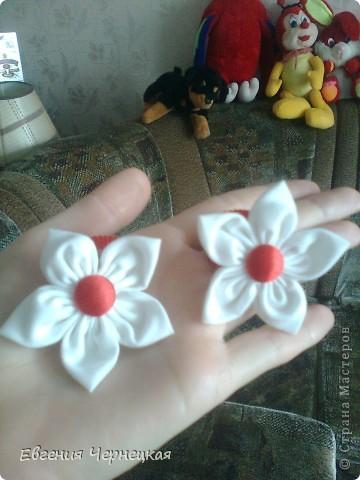 Цветочки! фото 4