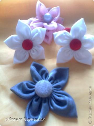 Цветочки! фото 2