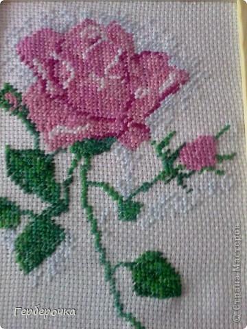 Роза в технике вышивка крестом.Вышивала бабушке на  юбилей,подарком бабуля осталась довольна) фото 3