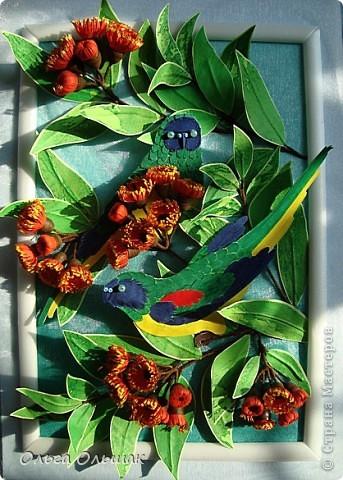 На этот раз у меня появились на свет попугайчики. фото 5