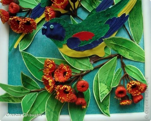 На этот раз у меня появились на свет попугайчики. фото 7