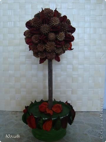 Дерево из сухих цветов и листьев фото 1