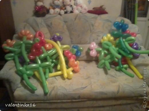 букетик из шариков фото 7