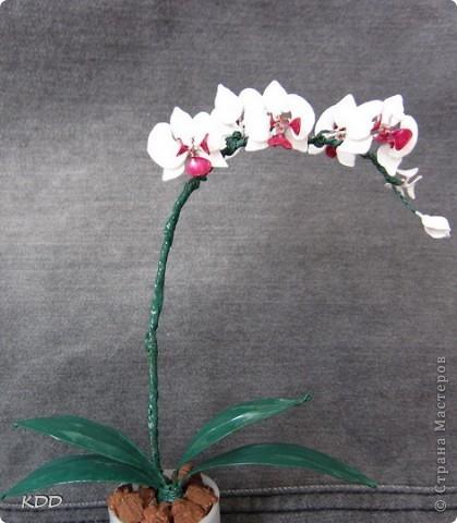 насмотрелась на цветочки из лака и тоже захотела... фото 1