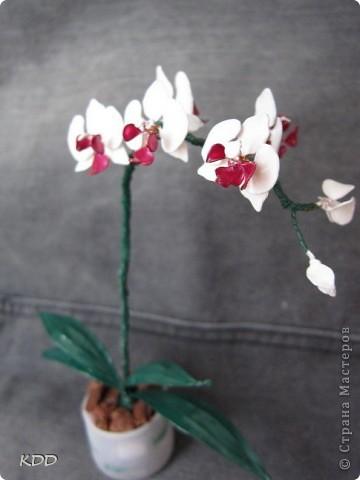 насмотрелась на цветочки из лака и тоже захотела... фото 3
