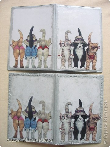 Разнообразие обложек на паспорта!!!  фото 12