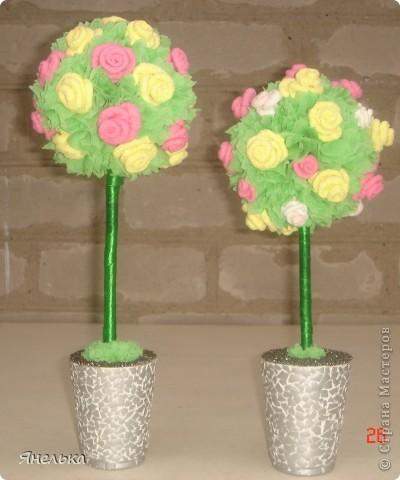 Всем здравствуйте! очень понравились выращенные на просторах Страны цветочные деревья, не смогла удержаться и тоже решила вырастить парочку. Самое первое было подарено сотруднице на день рождения. Эти два - совместное творчество с любимой племяшкой